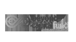 client-logo-bw-beyond-capital-fund